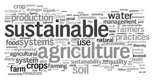 Sustainable-agriculture4