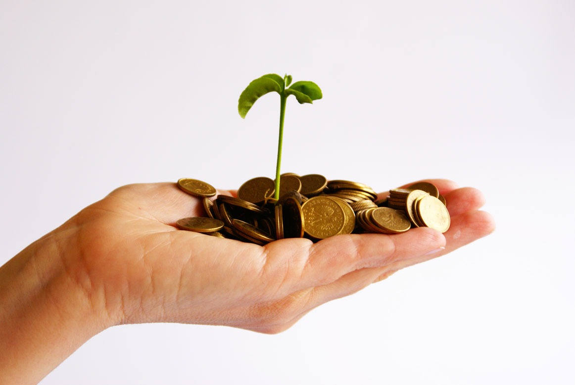 Seed Funding: The Art of Angel Investing - MIT Enterprise Forum of the Central Coast